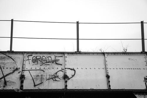 forgive photo